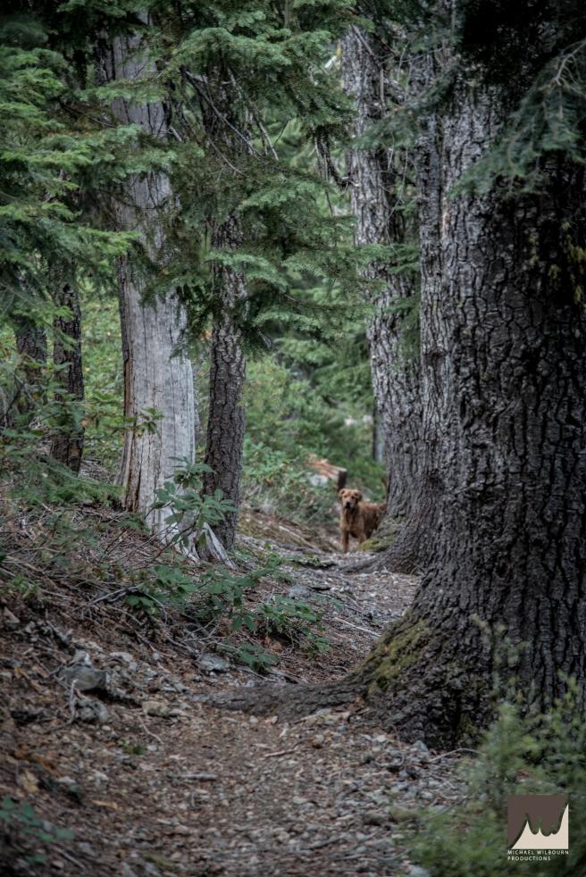 sanger lake californa-6199